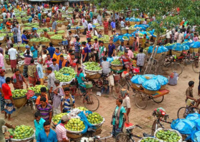 Climate Friendly Agribusiness Value Chains Sector Project (CFAVC) – CS2